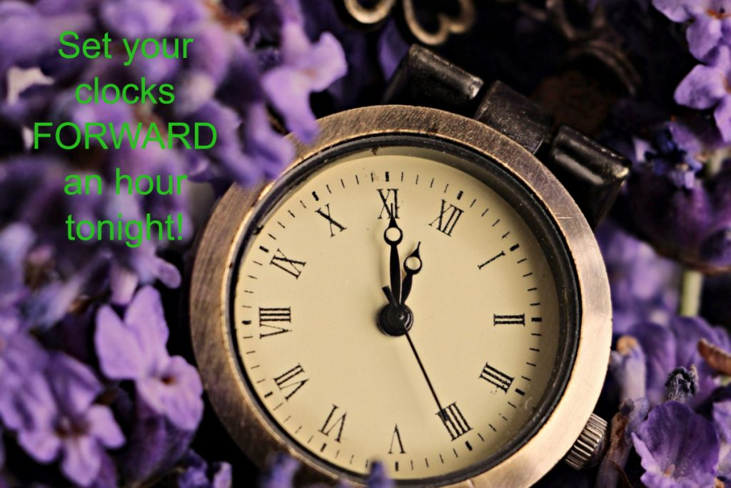 An antique clock with Roman numerals rests on a bed of purple flowers. The time is 5 minutes to 12.