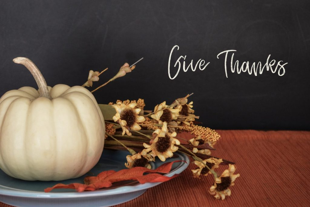 Give Thanks. A white pumpkin rests on a blue plate with fall leaves and dried flowers.
